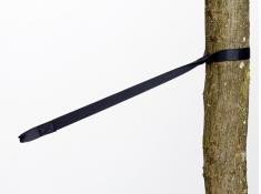Pasy, Tree Hugger - czarny(Tree Hugger)