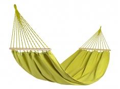 Zestaw tęczowy Parakeet Green